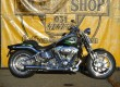 FXSTSSE CVO Screaming Eagle Springer